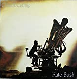 Cloudbusting - Kate Bush 12