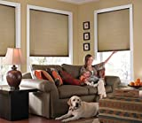 Windowsandgarden Custom Cordless Single Cell Shades, 24W x 48H, Antique Linen, Any Size 21-72 Wide and 24-72 High