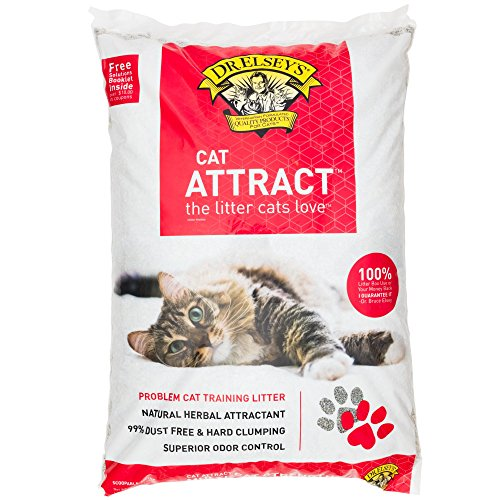 Miglior acquisto Precious Cat Attract Problem Training Litter, pound bag, Package may vary