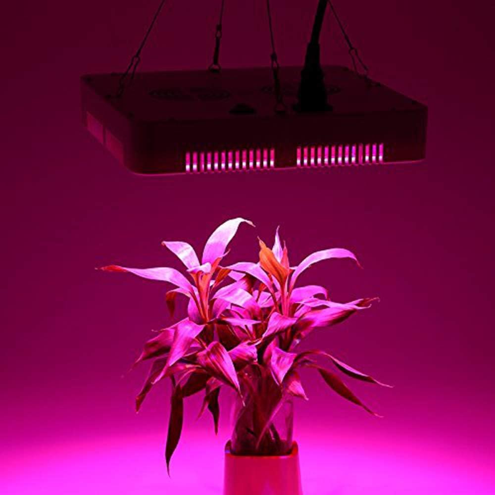 Blau+Rot+Wei/ß+UV+IR, Quadrat Froadp 300W LED Pflanzenlampe Innengarten Pflanze Wachsen Licht Multiple Spektrum 100 LEDs Grow Light Panel f/ür Zimmerpflanzen Gew/ächshaus Pflanzenlabor Gem/üse Blumen