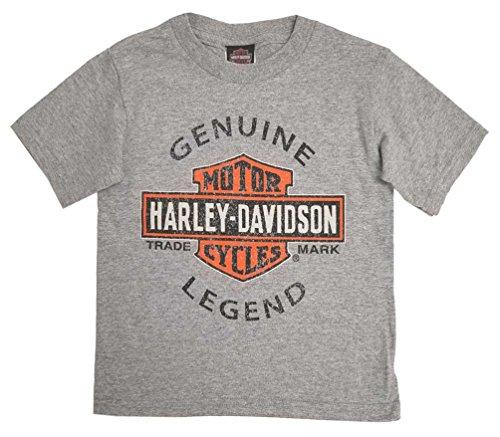 Harley-Davidson Little Boys Genuine Legend Short Sleeve Toddler Tee 1570714 (3T) Gray (Genuine Kids Shirt)