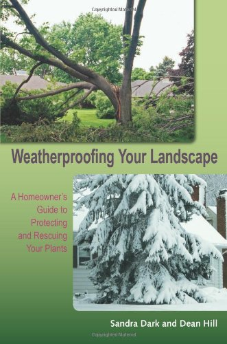 weatherproofing-your-landscape-a-homeowners-guide-to-protecting-and-rescuing-your-plants