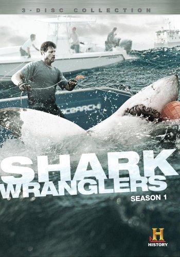 shark wranglers - 2