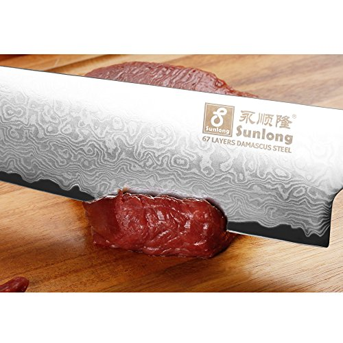 Sunlong Chef Knife 10 Inch Kitchen Knife-Japanese VG-10 67 Layers Damascus Steel-Razor Sharp-Rosewood Handle SL-DK1038R by Sunlong (Image #6)