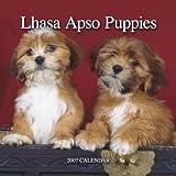 Lhasa Apsos Puppies 2007 Mini Calendar
