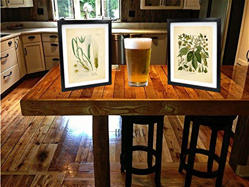 home & kitchen, wall art,  posters & prints  on sale, Ink Inc. Craft Beer Art Print – Hops and Barley Vintage Botanical Drawing – 8x10 Matte Unframed – Great Gift for Homebrewers and Beer Enthusiasts promotion1