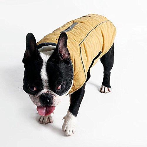 Beloved1314 Chaleco de Invierno para Mascotas con Reflectante para el frío, Reversible, cálido, para Perros, Azul, XS