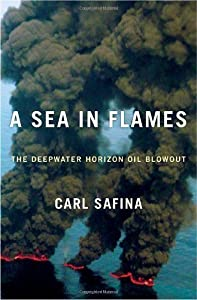 A Sea in Flames: The Deepwater Horizon Oil Blowout Hardcover – April 19, 2011