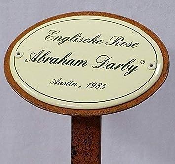 Rosenschild Rosenstecker Emaille Englische Rose Abraham Darby