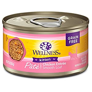 9. Wellness Complete Health Natural Wet Canned Cat Food