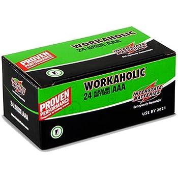Amazon.com: Interstate Batteries 38 Alkaline Battery Pack