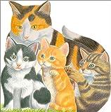 Cuddly Kittens, Emma Books Staff, 043921954X
