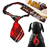 Alfie Pet by Petoga Couture - Qun Formal Dog Tie and Adjustable Collar - Color: Red Plaid, Neck Size: 11