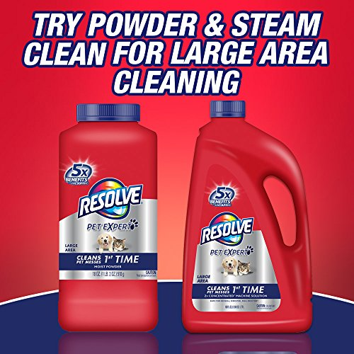 Resolve Pet Expert Stain and Odor Remover , 22 Ounces