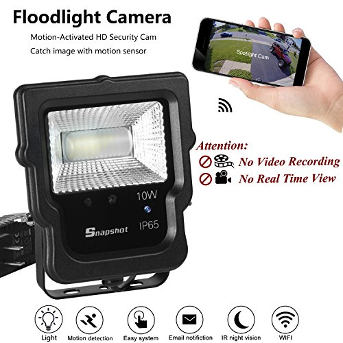 Moving Flood Light in Florida - 7