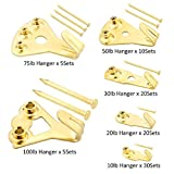 205 Pcs Professional Picture Hangers, Gold Color Picture Photo Frame Hooks Hanging Kit for Wall Mounting with 3 Sizes Pin Nails,Supports 10-100 lbs & Reduce Damage to Walls