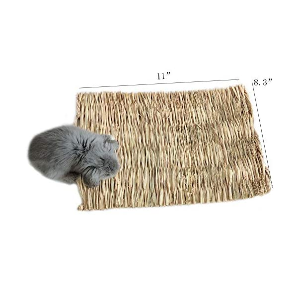 Grass Mat Woven Bed Mat for Small Animal Bunny Bedding Nest Chew Toy Bed Play Toy for Guinea Pig Parrot Rabbit Bunny Hamster Rat(Pack of 3) (3 Grass mats) 2