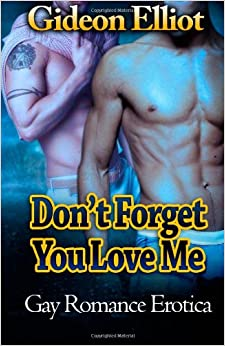 Don't Forget You Love Me: Gay Romance Erotica