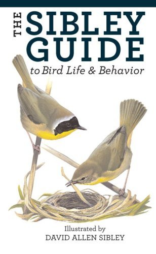 The Sibley Guide to Bird Life and Behavior by David Allen Sibley (28-Jul-2009) Paperback (Sibley Guide To Bird Life And Behavior)