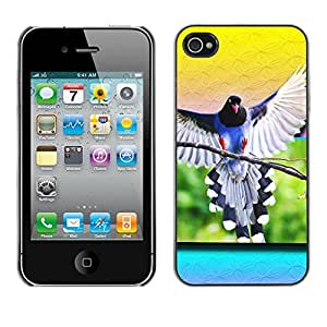 Qstar Arte & diseño plástico duro Fundas Cover Cubre Hard Case Cover para Apple iPhone 4 / iPhone 4S / 4S ( Parrot Wings Flying Bird Nature Tropical Yellow)