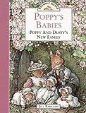 Poppy's Babies: Poppy and Dusty's New Family (Brambly Hedge)