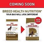 Royal Canin Breed Health Nutrition Rottweiler Adult Dry Dog Food 7