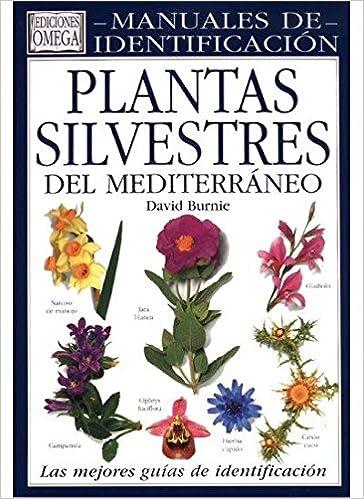 PLANTAS SILVESTRES MEDITERRANEO. M.IDEN. GUIAS DEL NATURALISTA-PLANTAS CON FLORES: Amazon.es: BURNIE, DAVID: Libros