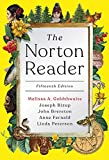 img - for The Norton Reader (Fifteenth Edition) book / textbook / text book