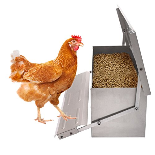Automatic Chicken Chook Poultry Feeder 10.3 lbs of Feed Aluminum Auto Treadle Self Opening Container Size 22