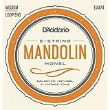 D'Addario Mandolin Monel Set, Medium, 11-40 (EJM74)