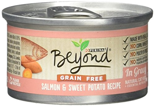 Beyond Dry Cat Purina Grain Free Salmon and Sweet Potato Rec