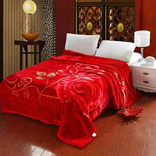 JNX Couvertures d'hiver double couche pour lit doux et moelleux, épais et chaud en polaire double taille Queen - Couleur identique à celle de la photo, 150 x 200 cm, 2,5 kg