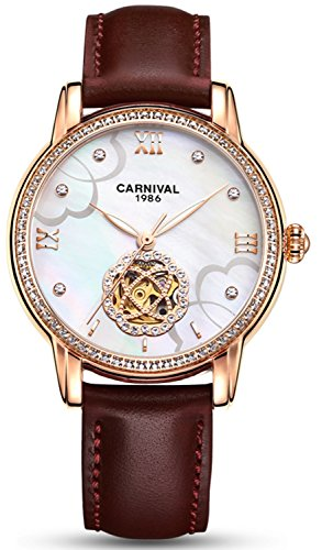 Luxury Hollow Automatic Mechanical Luminous Waterproof Women's Leather Strap Diamond Watches (Brown -