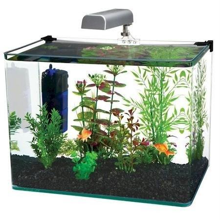 (Penn-Plax Water World Radius Curved Corner Glass Aquarium Kit, 7.5-Gallon)