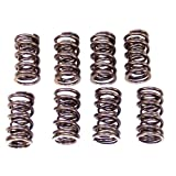 Empi Performance Dual Valve Springs, Dunebuggy & Vw