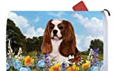 Cavalier King Charles Blenheim - Best of Breed Dog Breed Mail Box Cover