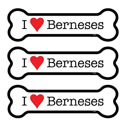 (SJT25330) Berneses (Bernese Mountain Dogs) 3-PACK of 2