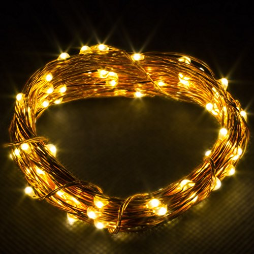 LED Concepts LED String Lights, Warm White