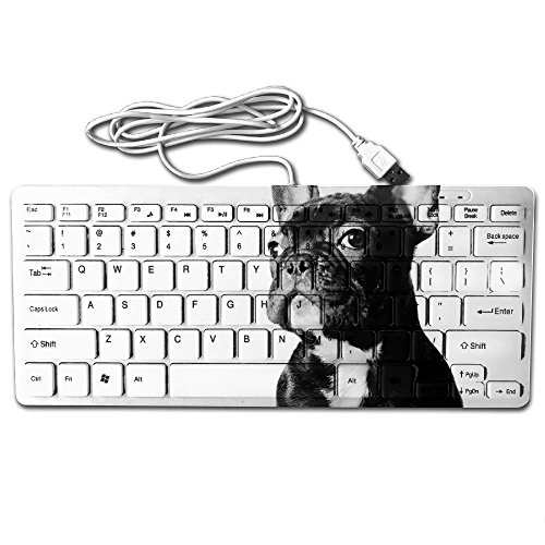 - Mini Keyboard USB Wired Ultrathin French Bulldog Light Portable Universal 78 Keys For Notebook Computer PC Desktops Laptop