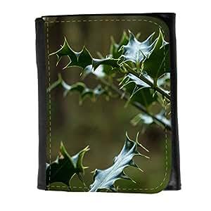 le portefeuille de grands luxe femmes avec beaucoup de compartiments // F00002484 cielo Sheffield landsacape invierno // Small Size Wallet