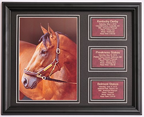 American Pharoah Pharaoh Triple Crown Photo w/ Saddle Leather Statistic Plaques for Each Race