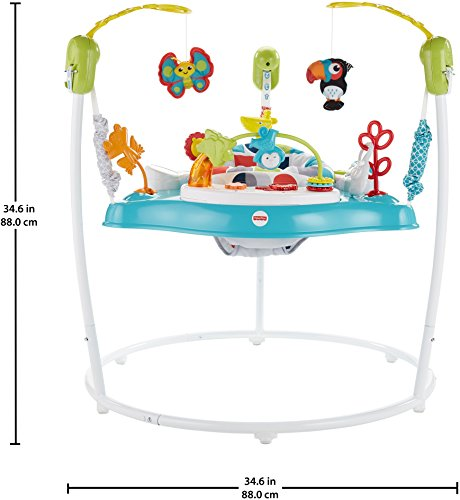 Fisher-Price Color Climbers Activity