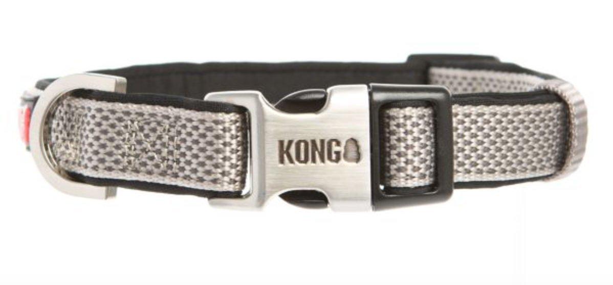 KONG Neoprene Padded Dog Collar by Barker Brands Inc. (Medium, Grey)