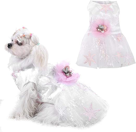 Nitrip Dulce Ropa para Mascotas Perro Gato Ropa Perrito Gatito Camisa Linda: Amazon.es: Productos para mascotas