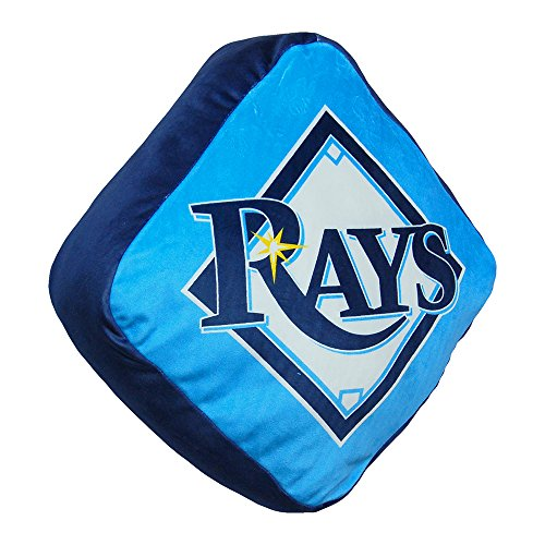 The Northwest Company Tampa Bay Rays MLB 15in Cloud Travel Pillow (Bed Bay Tampa Rays)