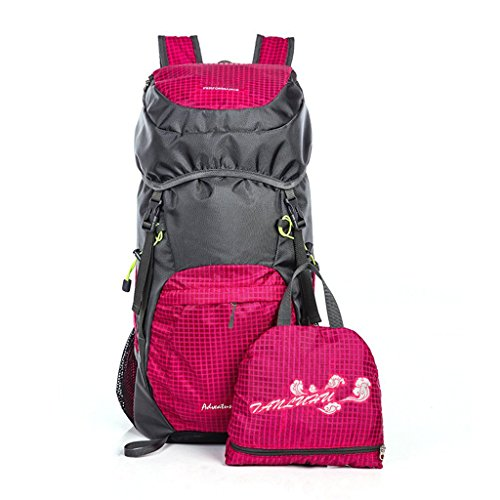 Spacious Lightweight BackPack