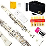 Glory White/Silver keys B Flat Clarinet with Second Barrel, 11reeds,8 Pads Cushions,case,carekit,Click to see more Colors
