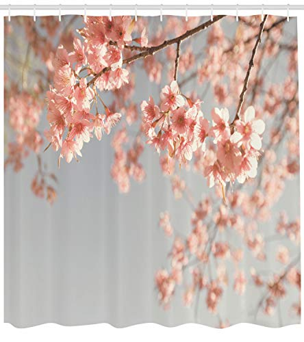 Ambesonne Peach Shower Curtain, Japanese Scenery Sakura Tree Cherry Blossom Nature Photography Coming of Spring, Fabric Bathroom Decor Set with Hooks, 84 Inches Extra Long, Bluegrey Coral