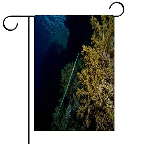 BEICICI Garden Flag Double Sided Decorative Flags Flute Fish in The red sea Best for Party Yard and Home Outdoor Decor