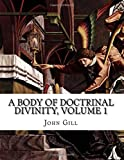 A Body of Doctrinal Divinity, Volume 1